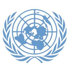 The United Nations Security Council: An Organization for Injustice