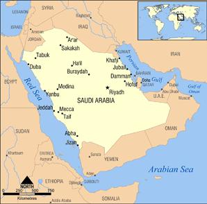 Gulf allies: A Record of Repression and Torture - Part 1: Saudi Arabia