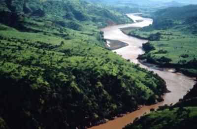 Nile-