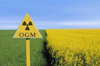 OGM e Monsanto: Glifosato o herbicida encontrado na urina humana por toda a Europa