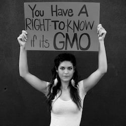 Ten Scientific Studies Prove that Genetically Modified Food Can Be Harmful To Human Health