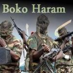 Boko Haram Escalates Offensive in Nigeria's Borno State