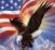 US drapeau aigle