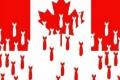 Canada-bombes