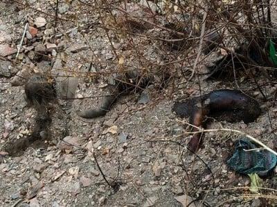 mass-grave-ukraine.4