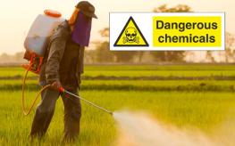 pesticides_mask_chemicals-263x164