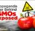 gmos_wars_prop_nslogo-263x164