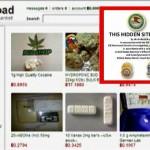 By Seizing E-Commerce Website Silk Road 2.0, the FBI Provides Protection for Violent Drug Cartels?