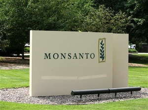 Monsanto's Cancer Causing Glyphosate: The Contamination of Land, Water, Air and Food
