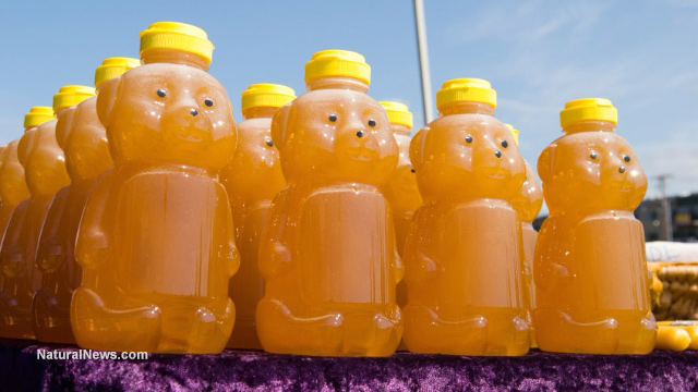 Most Honey, Including Organic, Contains Monsanto Roundup Herbicide's Toxic Glyphosates