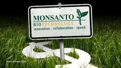 Genetically Modified Organisms (GMO) Monsanto-Money-Crops-400x225