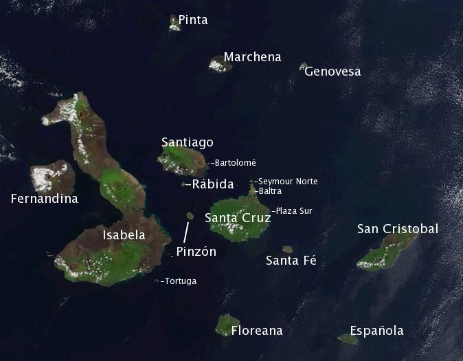 Galapagos Rebellion Against Foreign Investment In Hotels