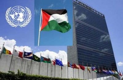 Palestine nations unies