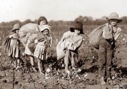 esclaves irlandais