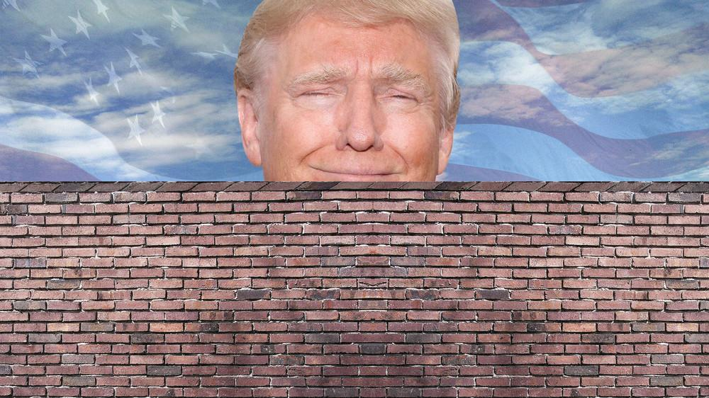 Trump's Wall & National Emergency Declaration Coming