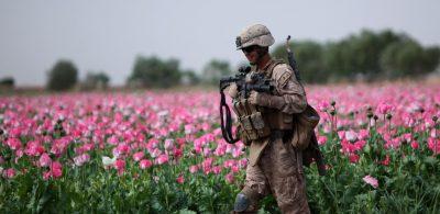 """Afghanistans """"farbige Revolution""""? Rauschgift und Opiumhandel"""