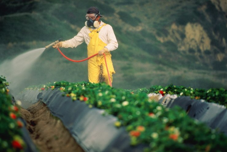 The Hidden Truth About Glyphosate Exposed, According to Undeniable Scientific Evidence