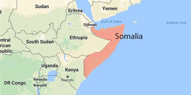 The Gulf Monarchies Intervention in The Horn of Africa ...
