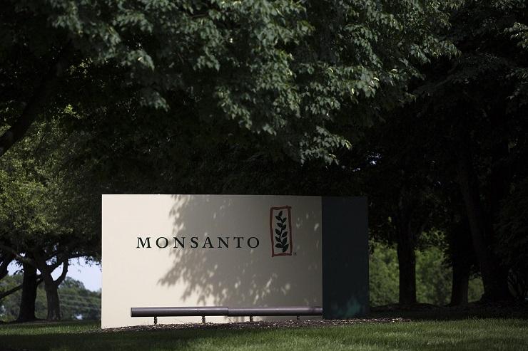 """Monsanto/Bayer-Gigant setzt auf """"Genom-Editierung"""" von Früchten und mehr"""