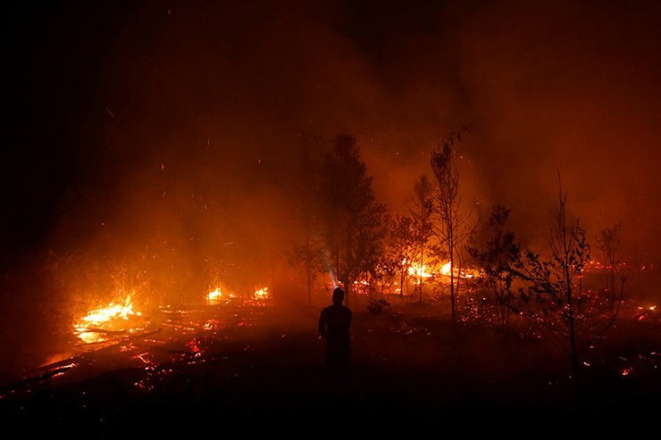 The Last Moments of Indonesia as We Know It. Forest Fires, Collapsing Economy