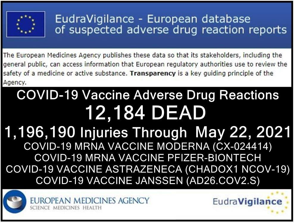 Depopulation & The mRNA Vaccine 22052021-eu-injuries