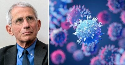Fauci Claims Spread of Virus by Unvaxxed Will Lead to More Dangerous Variants, but Experts Say Opposite Is True Fauci-says-unvaccinated-causing-variants-feature-800x417-400x209